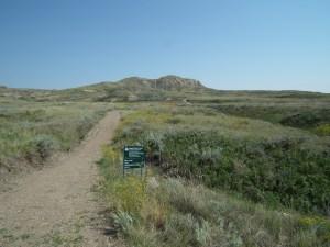 Eagle Butte is a 2km loop just inside Grasslands National Park.